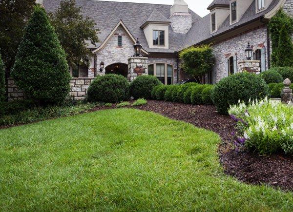 Nashville Lawn Care | Pure Green | Franklin Lawn Care | Lawncare